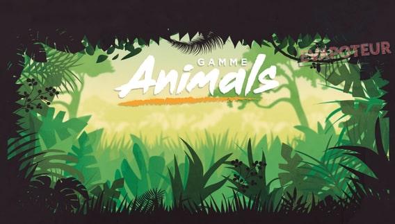 Animals Cloud Vapor