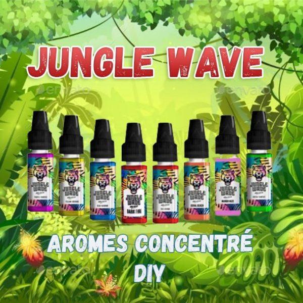 Arôme Concentré Jungle Wave DIY