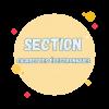 section cigarette electronique
